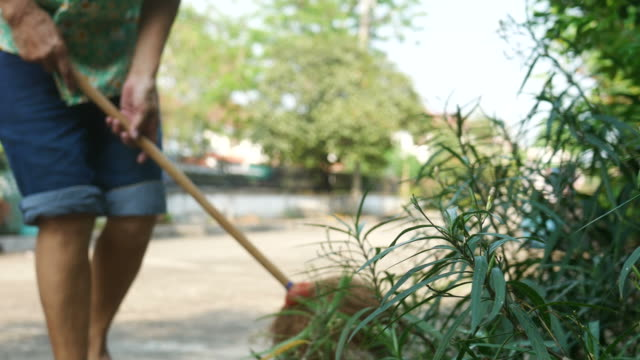 housekeeper  sweeping foliage