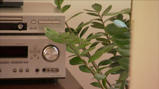 a houseplant frames a stereo system and  dvd/vhs player. - dvd stock videos & royalty-free footage