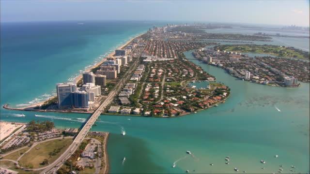 aerial, houses along coastline, miami, florida, usa - fan palm tree stock videos & royalty-free footage