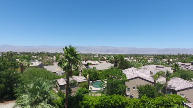 houses and a curvy road in palm springs - fan palm tree stock videos & royalty-free footage
