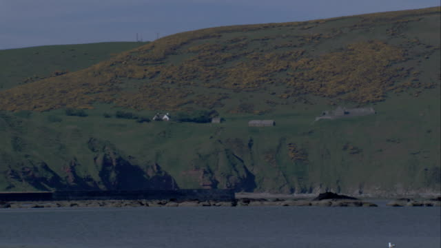 houses are built on the rocky aberdeenshire coastline. available in hd. - クロヴィー点の映像素材/bロール