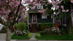 Houses Blossoms 03