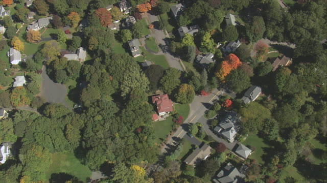aerial houses nestling in trees with some autumn colors, and small pond / lexington, massachusetts, united states - lexington massachusetts stock videos & royalty-free footage