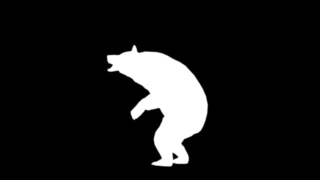 howling bear (loopable) - bear stock videos and b-roll footage