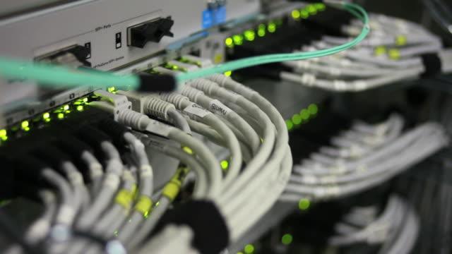 vídeos de stock e filmes b-roll de conector do cabo de rede close-up (loopable - cabo