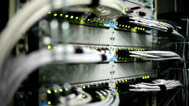 vídeos de stock e filmes b-roll de conector do cabo de rede close-up (panorama - fios