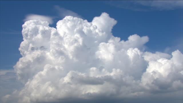 a huge bank of cumulus clouds gather in a blue sky. - 積雲点の映像素材/bロール