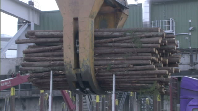 A huge crane lifts a bundle of timber from a truck and deposits them on a conveyor belt at a paper mill.
