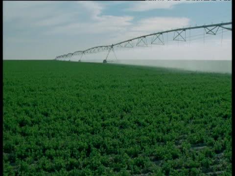 Huge crop sprayer moves across pivot irrigation field, Arizona