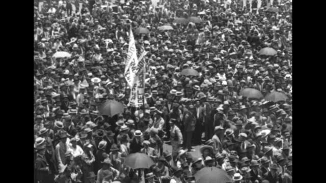 huge crowd with banner; some people hold umbrellas; all wear hats / a female red cross worker in a white uniform gives water to a little girl wearing... - big hair stock videos & royalty-free footage