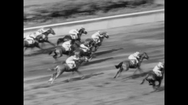 / huge crowds men with straw hats at belmont park races / horses line up / horses speed round track / crowd gathers track side to watch / faireno... - 1932 stock videos & royalty-free footage