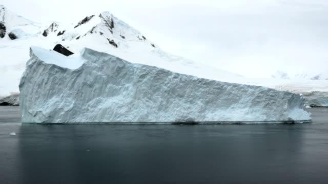 huge iceberg in the antarctic peninsula - antarctic peninsula stock videos & royalty-free footage