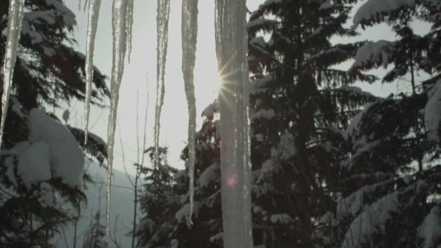 vídeos de stock, filmes e b-roll de enormes gelos pendurados em um telhado perto da forrest em la clusaz na frança - pingente de gelo