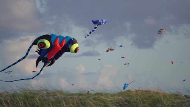 huge kites in the sky - traditional festival stock videos & royalty-free footage