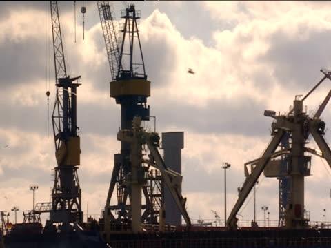 huge merchant tanker leaves harbour seagulls encircle ship container terminal cranes in background hamburg - vattenfågel bildbanksvideor och videomaterial från bakom kulisserna
