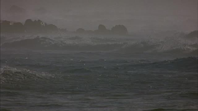 vídeos de stock, filmes e b-roll de huge ocean waves roll and break on a rocky coast. - vista do mar