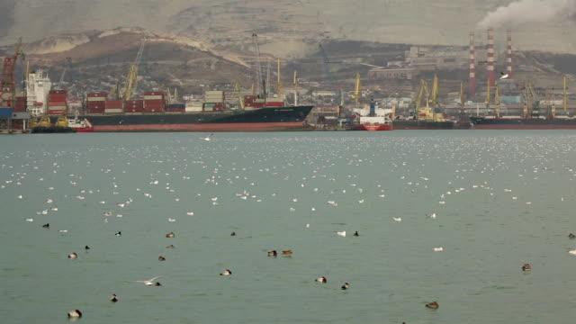 大きな港海 - ポートワイン点の映像素材/bロール