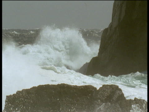 "vidéos et rushes de huge wave crashes over rocks, falkland islands - ""bbc natural history"""