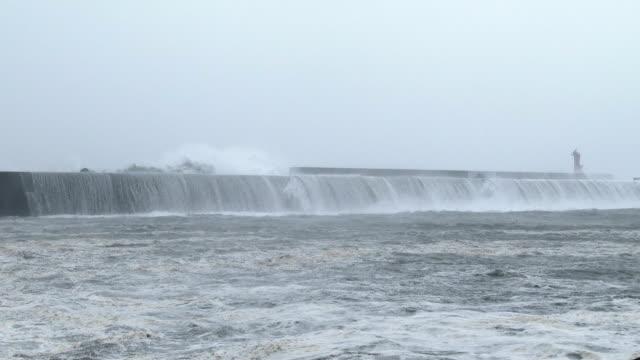vídeos de stock, filmes e b-roll de huge waves spawned by typhoon halong crash into a harbor on the south coast of japan on 8th august 2014 - quebra mar
