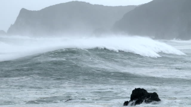 Huge waves spawned by typhoon Halong crash into the south coast of Japan on 8th August 2014