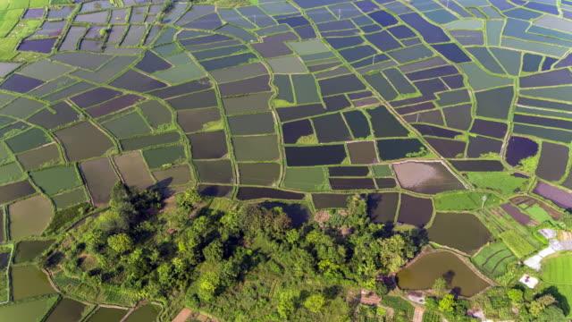 Hui xian national wetland park in Lingui,Guilin,China