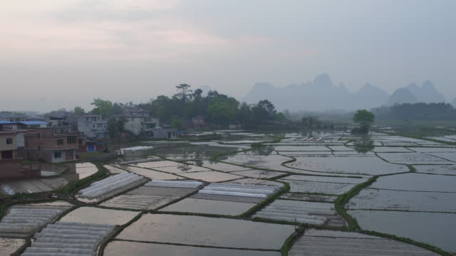 huixian wetland park,lingui,guilin,guangxi,china - linguini stock videos and b-roll footage