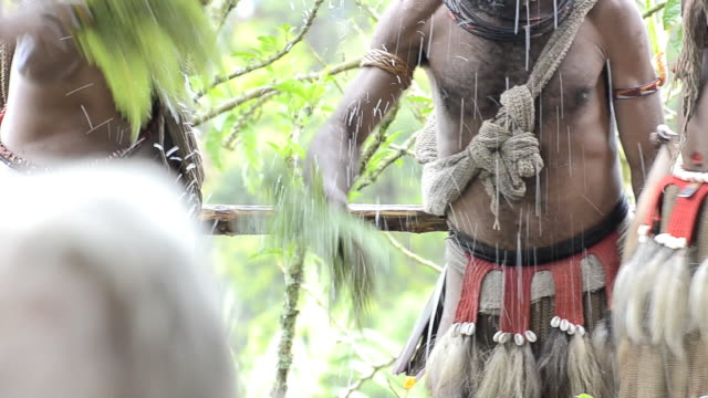 Huli wigmen use leaves to sprinkle water on their heads in preparation for a dance called a sing-sing.