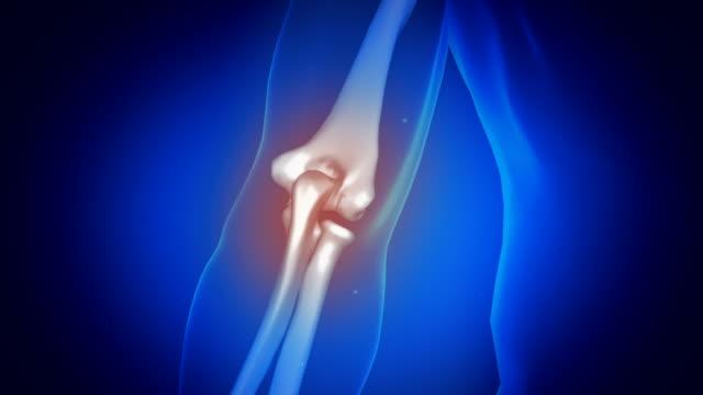 vídeos y material grabado en eventos de stock de anatomía humana en interfaz médica futurista. animación de brazos. - codo