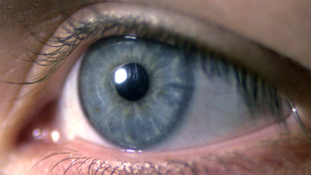 human blue eye - eyeball stock videos and b-roll footage