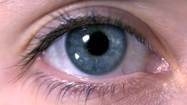 human blue eye - blue eyes stock videos and b-roll footage