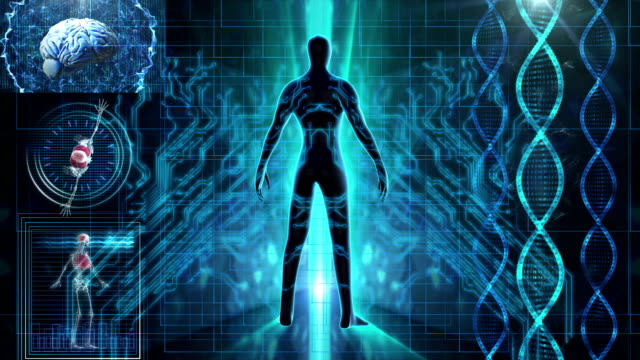 human body medical scan - parte del corpo animale video stock e b–roll