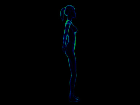 human body of a woman for study - limb body part stock videos & royalty-free footage