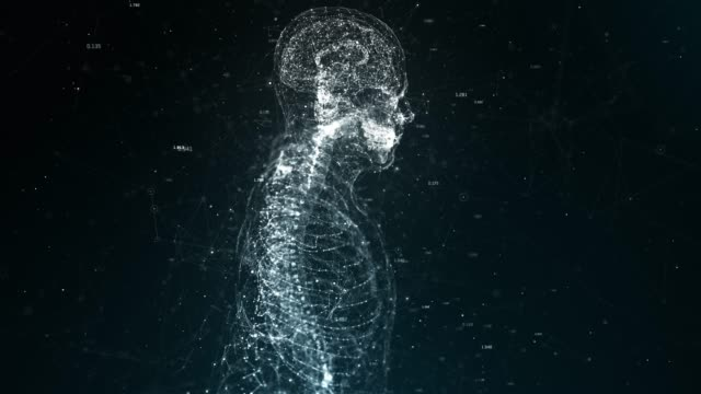 human body - the human body stock videos & royalty-free footage
