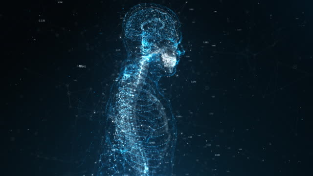 human body - cyberspace stock videos & royalty-free footage
