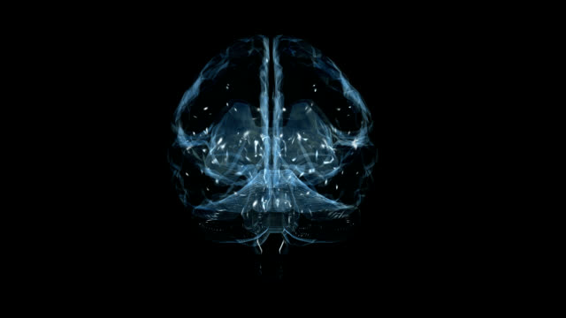 """human brain, animation"" - biological cell stock videos and b-roll footage"
