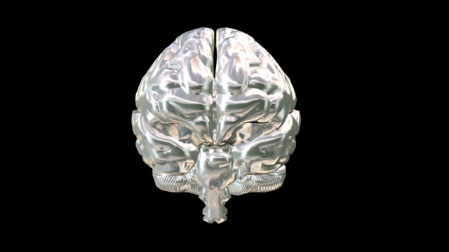 """Human Brain, animation"""