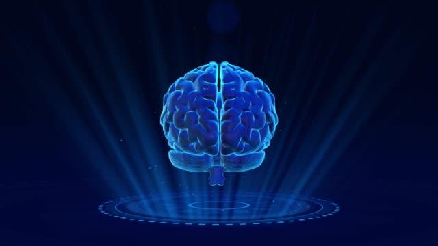 vídeos de stock, filmes e b-roll de fundo do cérebro humano 4k - lobo temporal