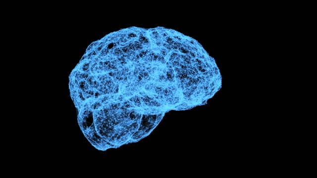 human brain being formed by particles. plexus structure evolving around 3d render - cell structure stock videos & royalty-free footage
