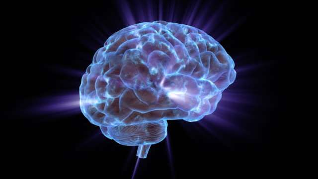 a human brain electrically charged with thought - erinnerung stock-videos und b-roll-filmmaterial