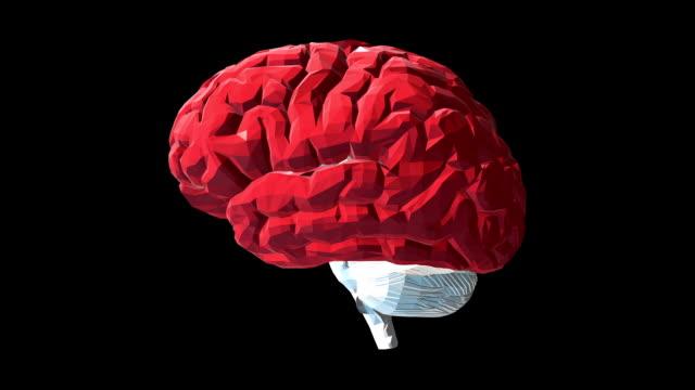 vidéos et rushes de cerveau humain low poly avec canal alpha - veine humaine
