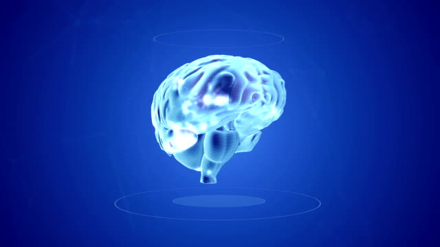 Human Brain neuron Scan animation