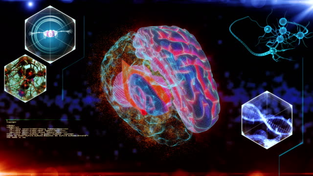 ヒト脳ニューロンスキャン - 間脳点の映像素材/bロール