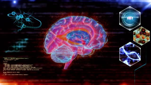 vídeos de stock e filmes b-roll de human brain neuron scan - tronco cerebral