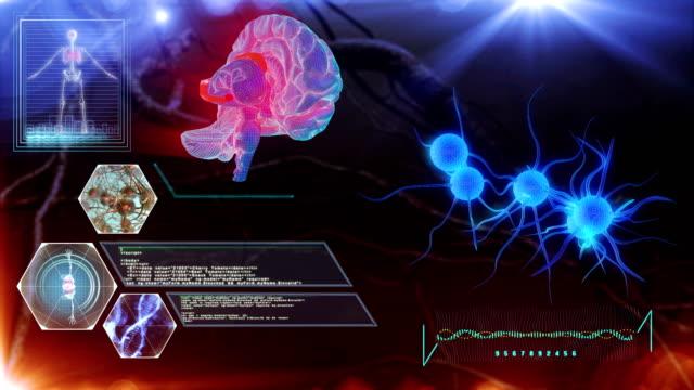 ヒト脳ニューロン - 間脳点の映像素材/bロール