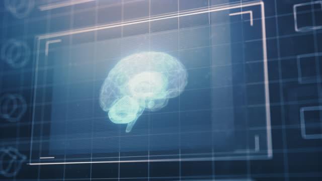 Human Brain on Futuristic Computer Monitor