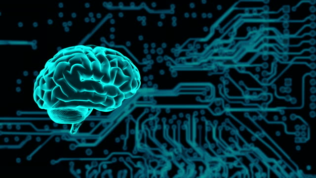 human brain or ai or artificial intelligence - neuroscience stock videos & royalty-free footage