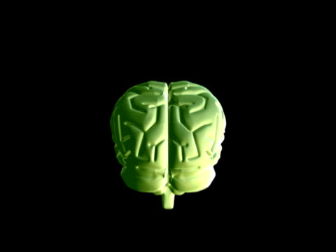 cgi, human brain rotating against black background - biomedizinische illustration stock-videos und b-roll-filmmaterial