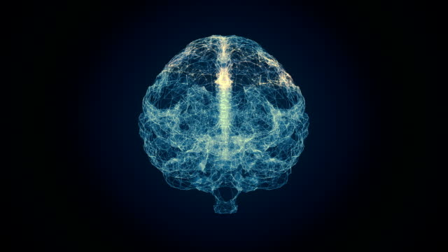 human brain scan - human nervous system stock videos & royalty-free footage