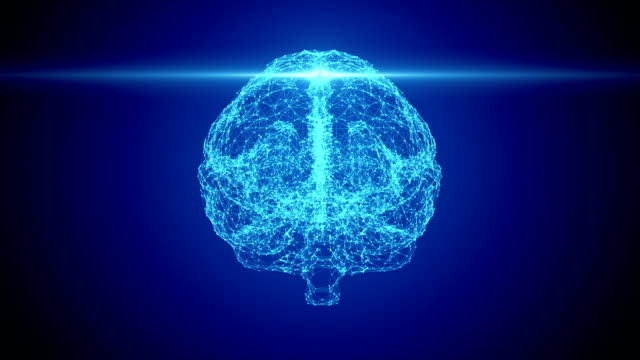 human brain scan - cerebral cortex stock videos & royalty-free footage