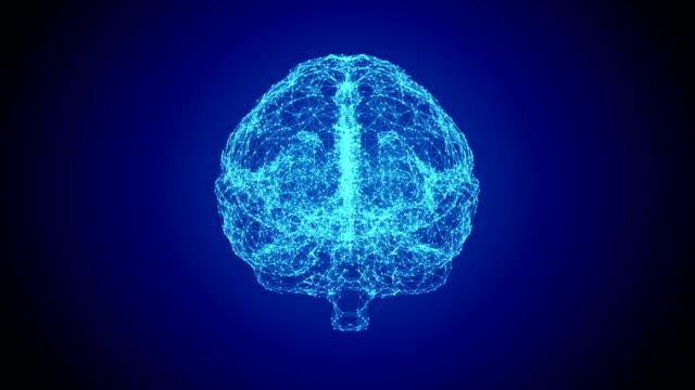 human brain - cerebral cortex stock videos & royalty-free footage